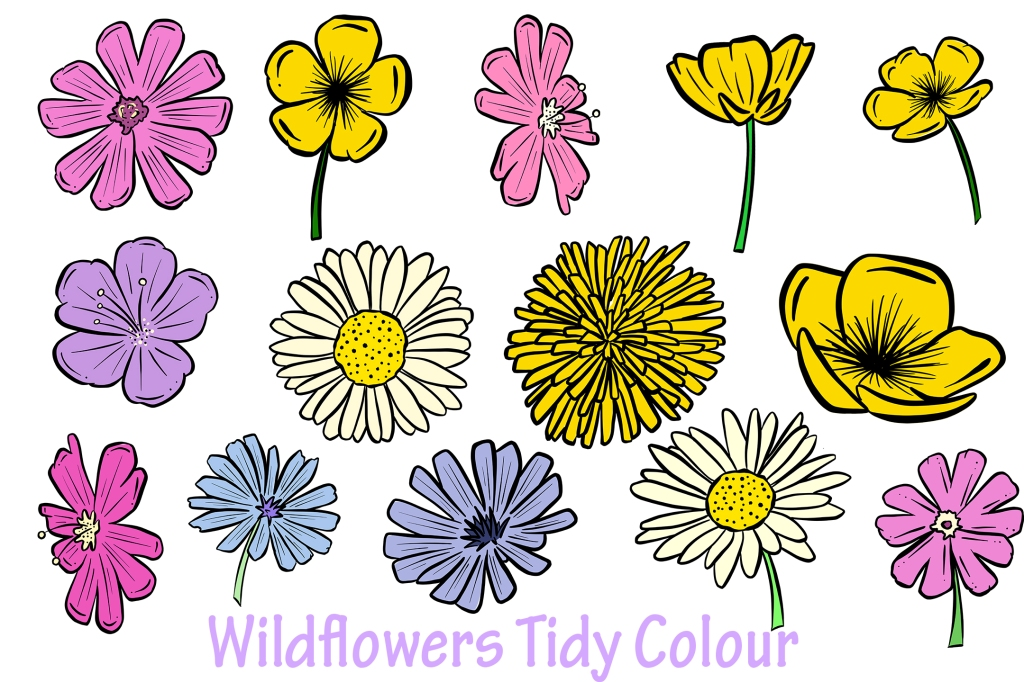 Wildflower Cartoon Illustration Collection by Squeeb Creative